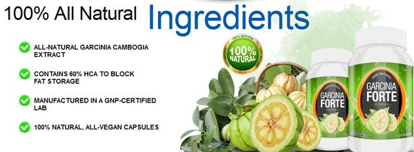 garcinia forte ingredients